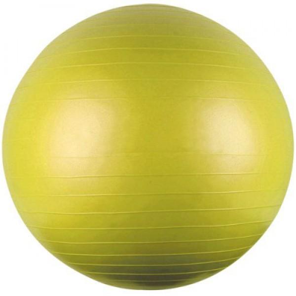 """כדור כושר 55 ס""""מ - Gym Body Ball"""